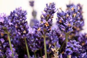 Calming aromas that can bring calm and clarity at this time